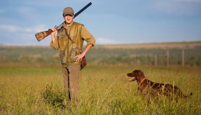 Have reasonable expectations from a hunting dog
