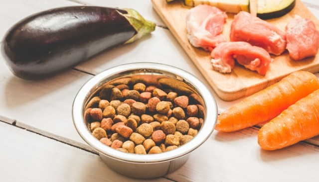Reasons to Feed Your Dog Raw Food Diet