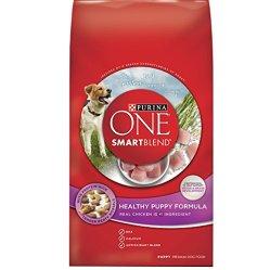 Purina ONE SmartBlend Healthy Puppy Formula Dry Dog Food