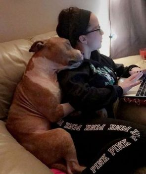 Check Out This Dog Who Can't Stop Snuggling Her Rescuer