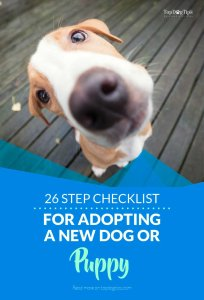 Step Checklist for Adopting a New Dog or Puppy