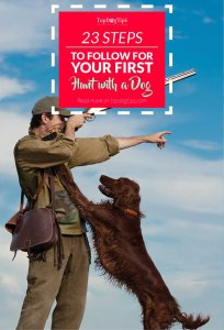 Step Checklist to Follow for Your Very First Hunt With a Gun Dog