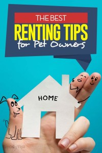 11 Tips for Pet Owners that Rent