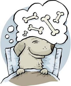 Dog dreaming about dog food