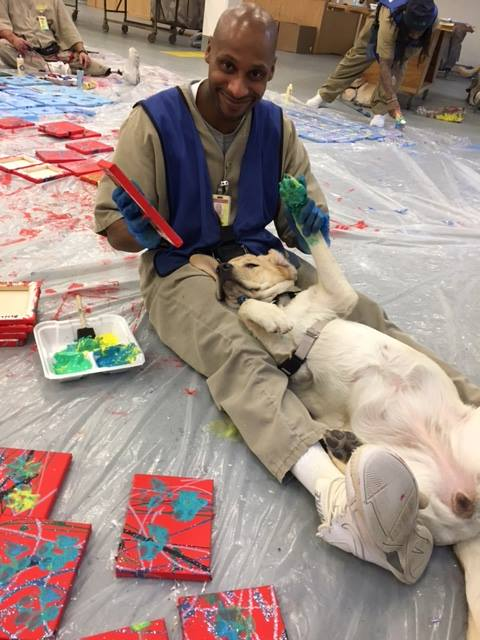 Service Dogs Trained by Inmates Give Valentine's Day Surprise