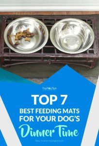 Top Best Dog Feeding Mats to Keep Doggy Dinning Area Clean