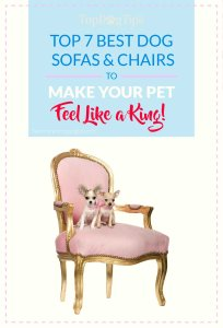 Top Best Dog Sofas and Chairs