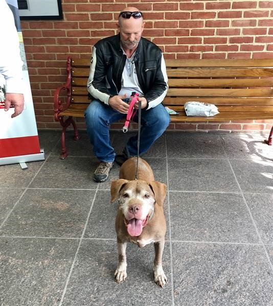 This Man Just Adopted an 18-year Old Shelter Dog