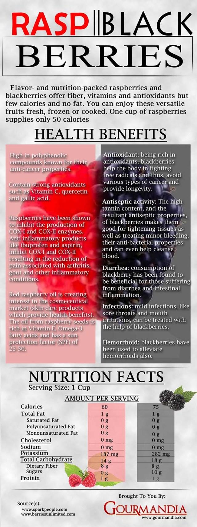 Benefits of feeding raspberries to dogs infographic