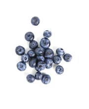 Can my dog eat blueberries