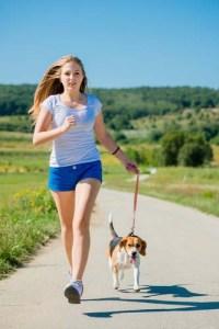Exercise the dog to reduce stress