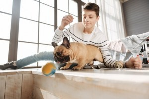 How To Choose the Right Size Dog Toy