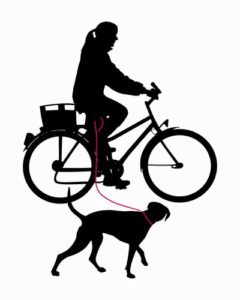 Top 5 Best Dog Bike Leash for Biking with Dogs in 2018