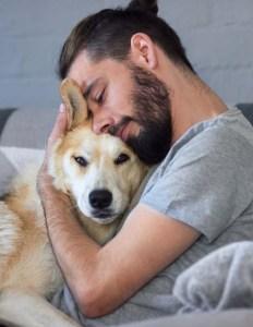 Pet a dog to calm him down