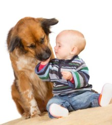 Study on benefits of dogs for kids health