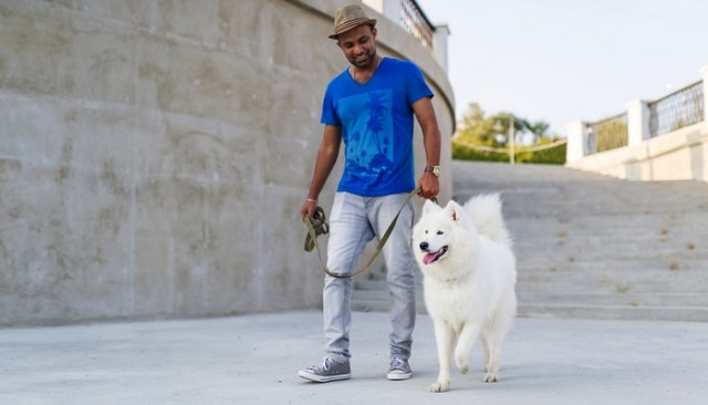 20 Most Friendly Dog Breeds in the World