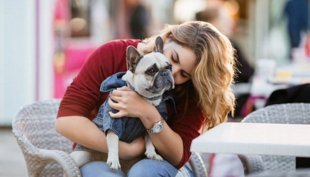 Dog Breeds That Require the Most Care, Maintenance and Money