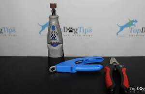 How To Choose the Right Dog Nail Clippers