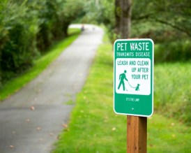 How To Pick the Right Dog Pooper Scooper