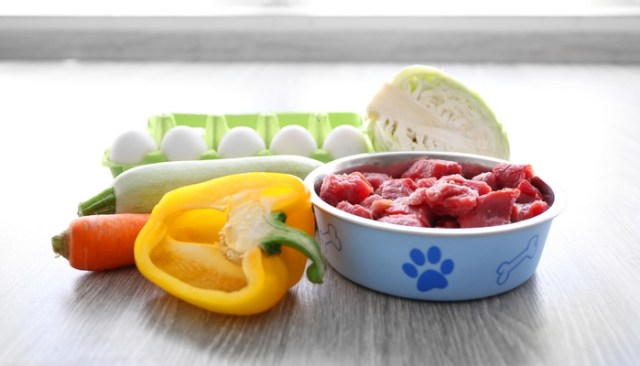 Is a Raw Food Diet Safe for Dogs