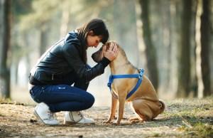 The Saga of Pet Ownership