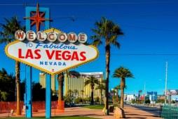 Dogs in Las Vegas, Nevada