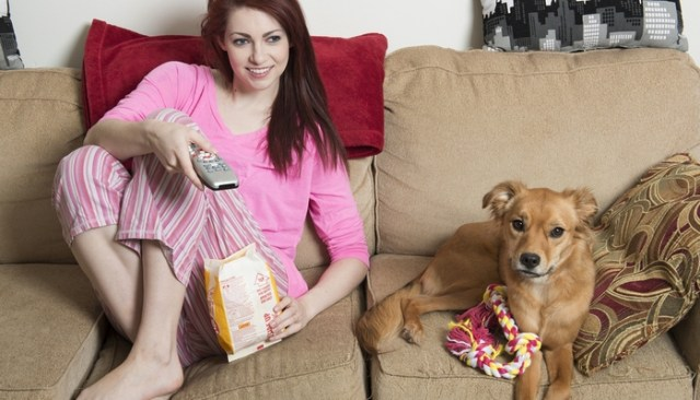 best tv shows about dogs