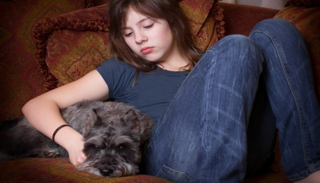 Therapy Dogs for Depression How effective are they according to research?