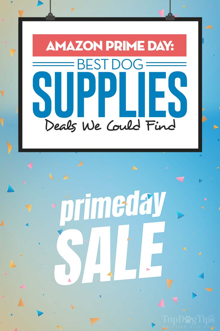 Amazon Prime Day - The Best Dog Supplies Deals