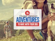 Top 35 Unique Summer Adventures to Have with Your Dog