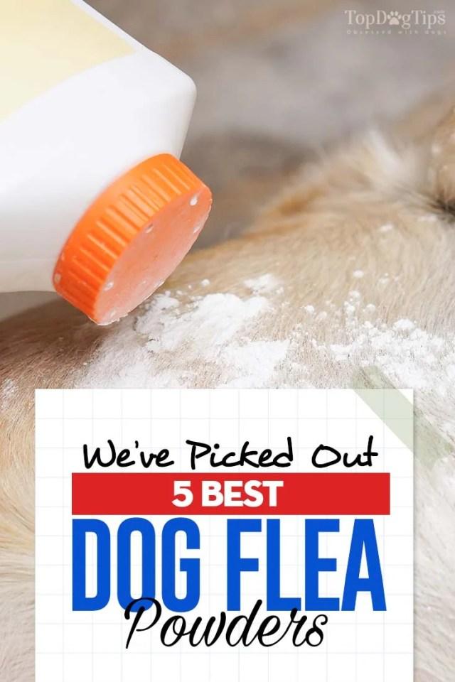 Top Rated Best Dog Flea Powder Brands