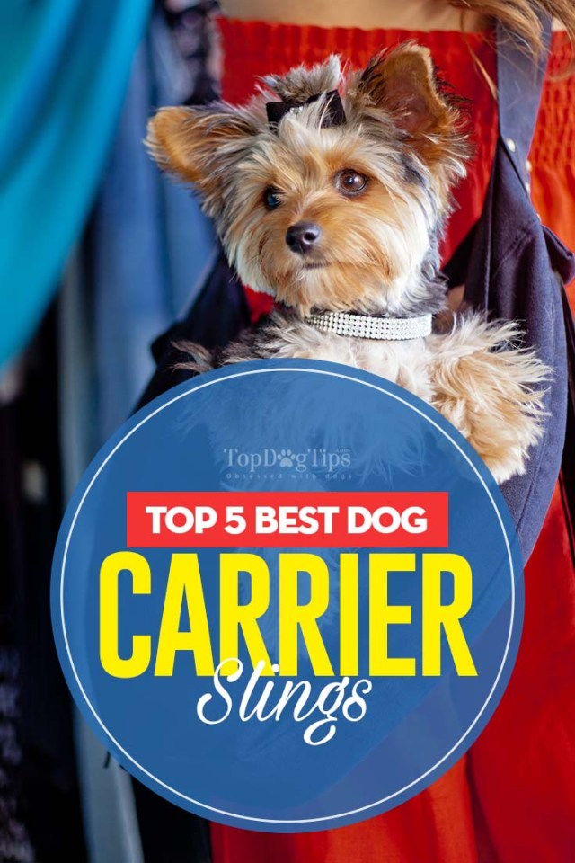 Top Rated Dog Carrier Slings 2020