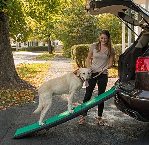 Pet Gear Travel Lite Ramp with supertraX