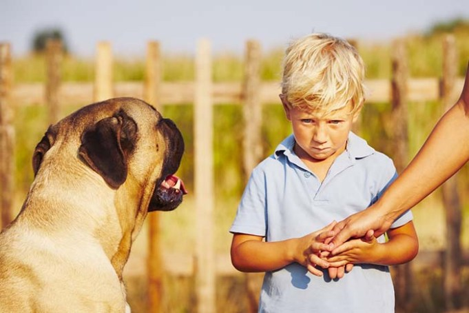 Kids Don't Know Not to Approach Frightened Dogs and It's a Problem