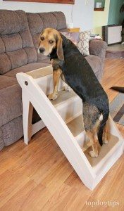 PetSafe Solvit PupSTEP Stairs for Dogs