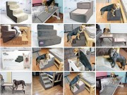 Top 15 Best Dog Stairs for Beds and Cars in 2020