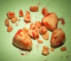 How Can I Tell if My Dog Has Bladder Stones?