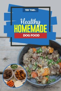 Healthy Homemade Dog Food Recipe for Any Time
