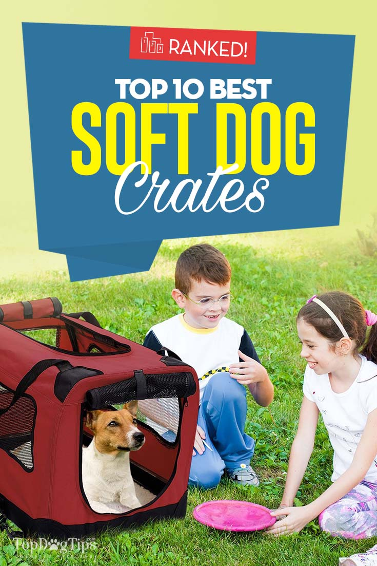 Top 10 Best Soft Dog Crates