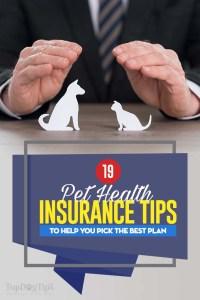 19 Tips for Picking the Best Pet Insurance Plan