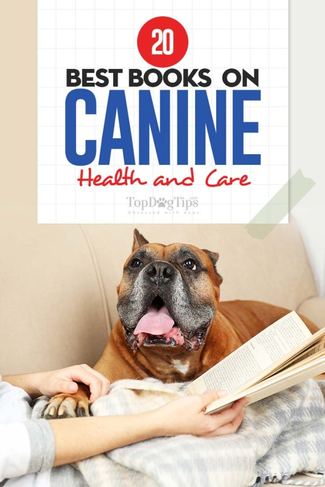 20 Best Dog Books on Canine Health and Care