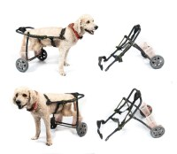 DIY Dog Wheelchair: How to Make a Wheelchair for Dogs By ...