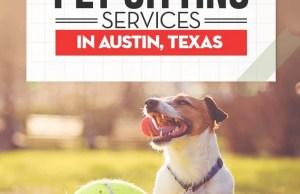 Best Dog Boarding in Austin