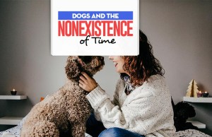 Dog Ownership and the Nonexistence of Time