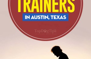 The Best Dog Trainers in Austin
