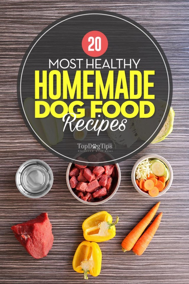 The Most Healthy Homemade Dog Food Recipes to Try