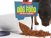 Top Best Dog Foods for Rottweilers