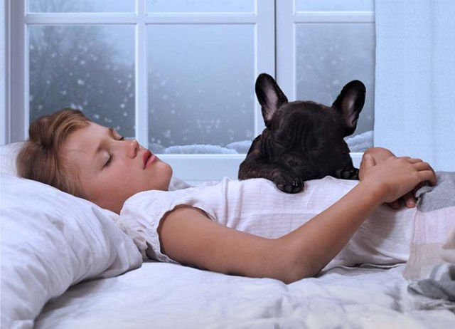 Why do dogs sleep more in winter time