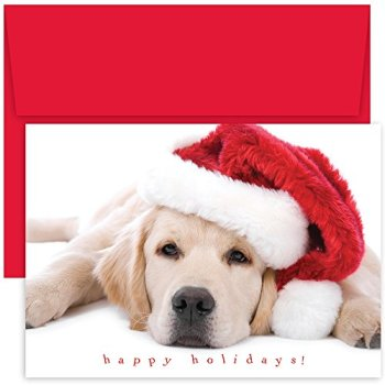 Great Papers! Holiday Greeting Card, Santa Puppy