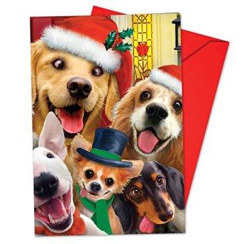 Christmas to Zoo Christmas Greeting Cards